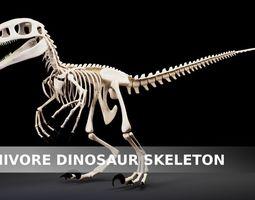 3D asset Carnivore Dinosaur Skeleton