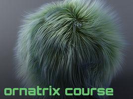 Ornatrix 6.8