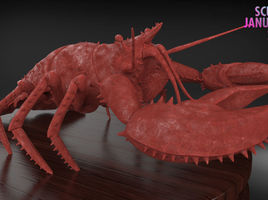 Making a Lobster