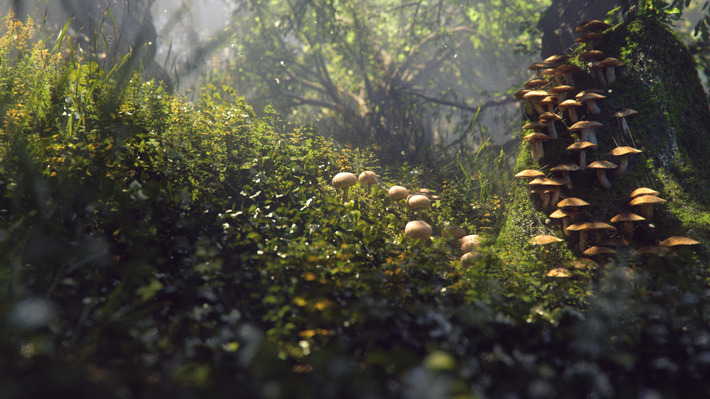 25 Photorealistic Landscape 3D Renderings: If Only Those Places Existed 36
